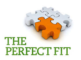 The Perfect Job? It's about Fit – CAREER WISDOM COACH